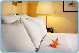 hospitality pillows